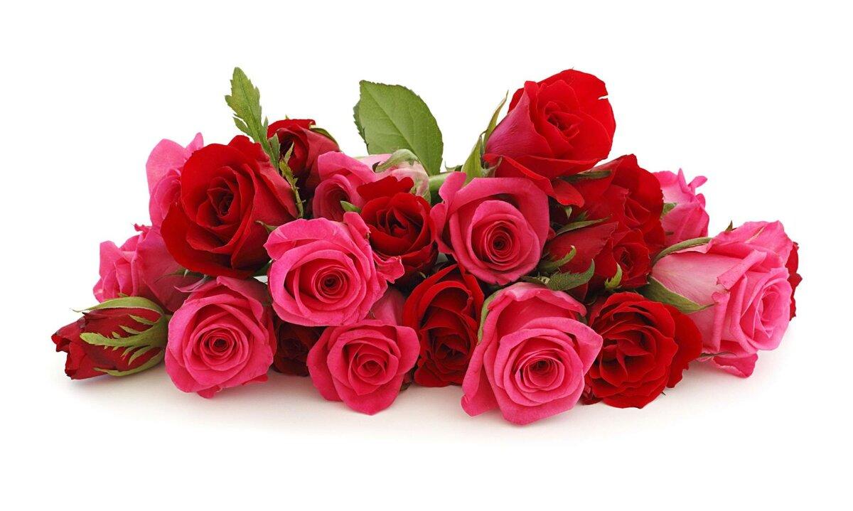 Умка прозрачном, открытки с днем рождения бабушке цветы
