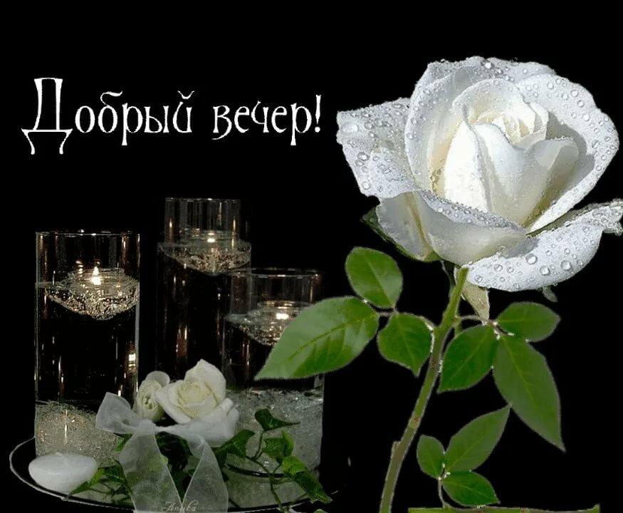 Открытка добрый вечер милая