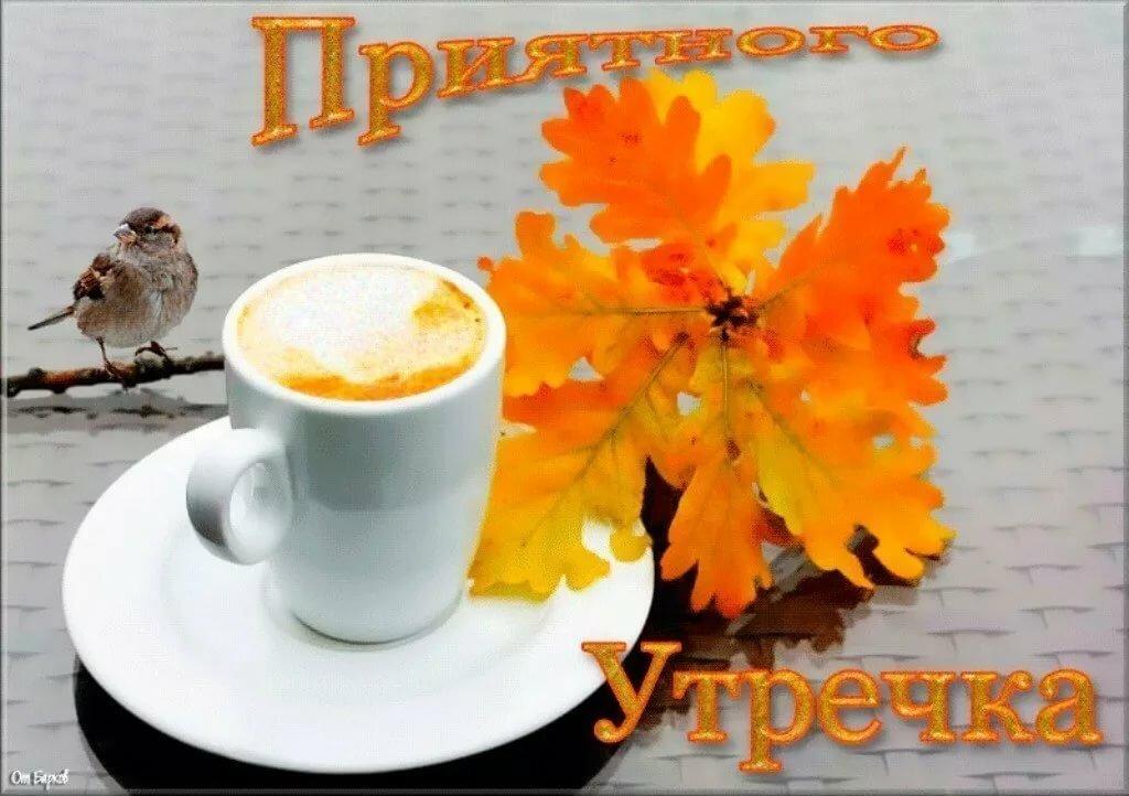 С новым днем и с добрым утром картинки новые прикольные октябрь