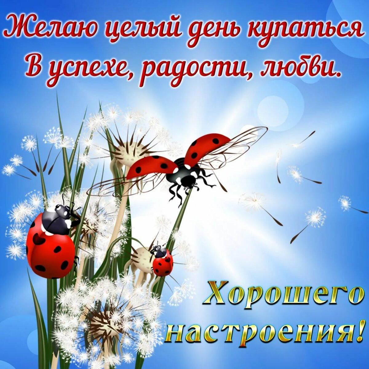 составили открытки с позитивными пожеланиями только россии, из-за
