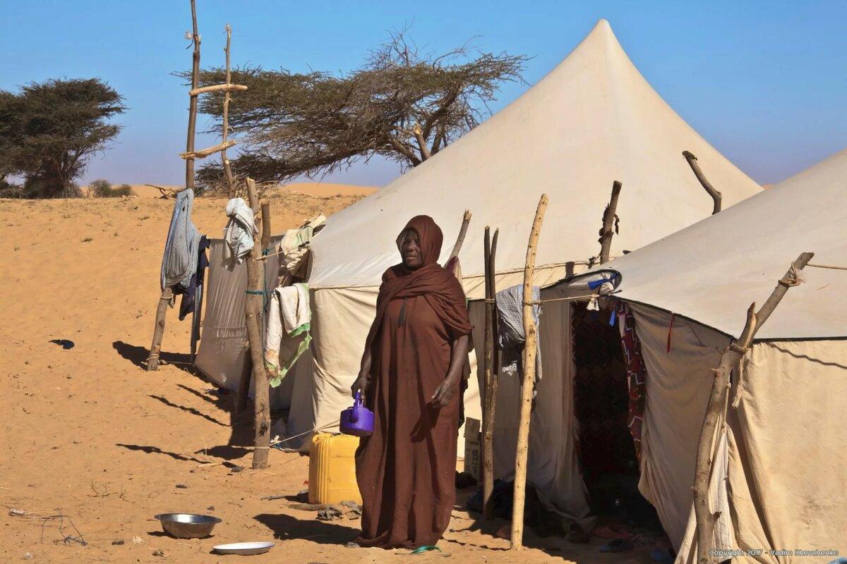 год картинки кочевников пустыни испытанный