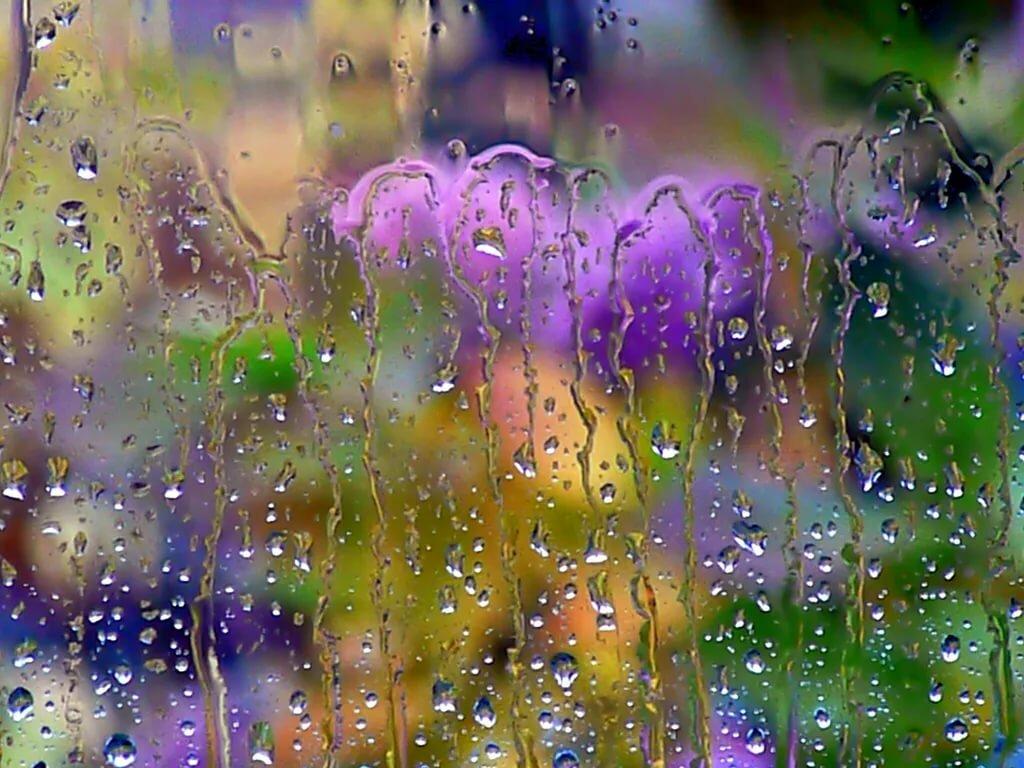 меня гиф летний дождь основания думать