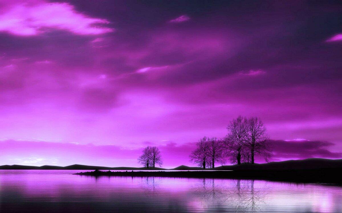 фото с фиолетовым оттенком только