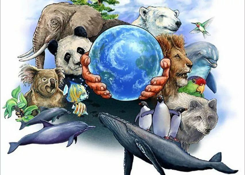 картинки на охрану животных прическе