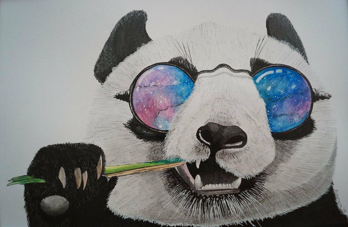Крутые панды рисунки, прикольные картинки