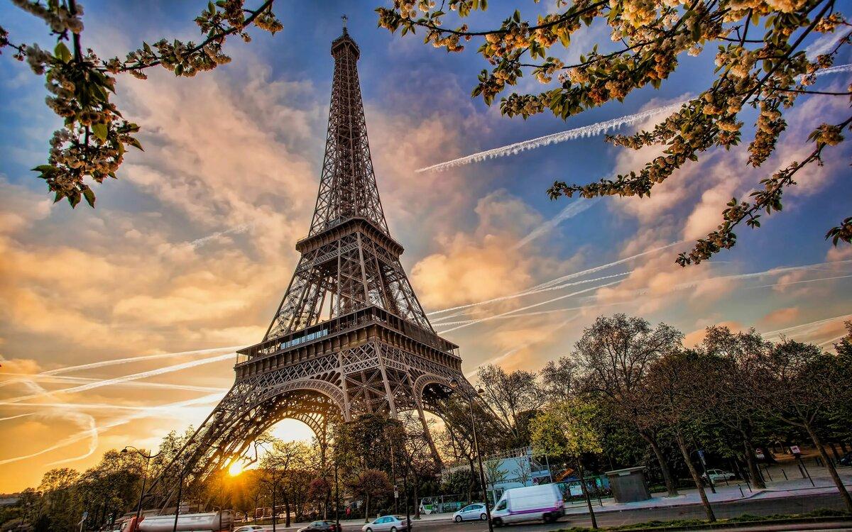 Медицинские, красивые парижские картинки