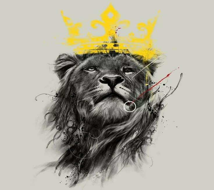 Картинки с львами на аву