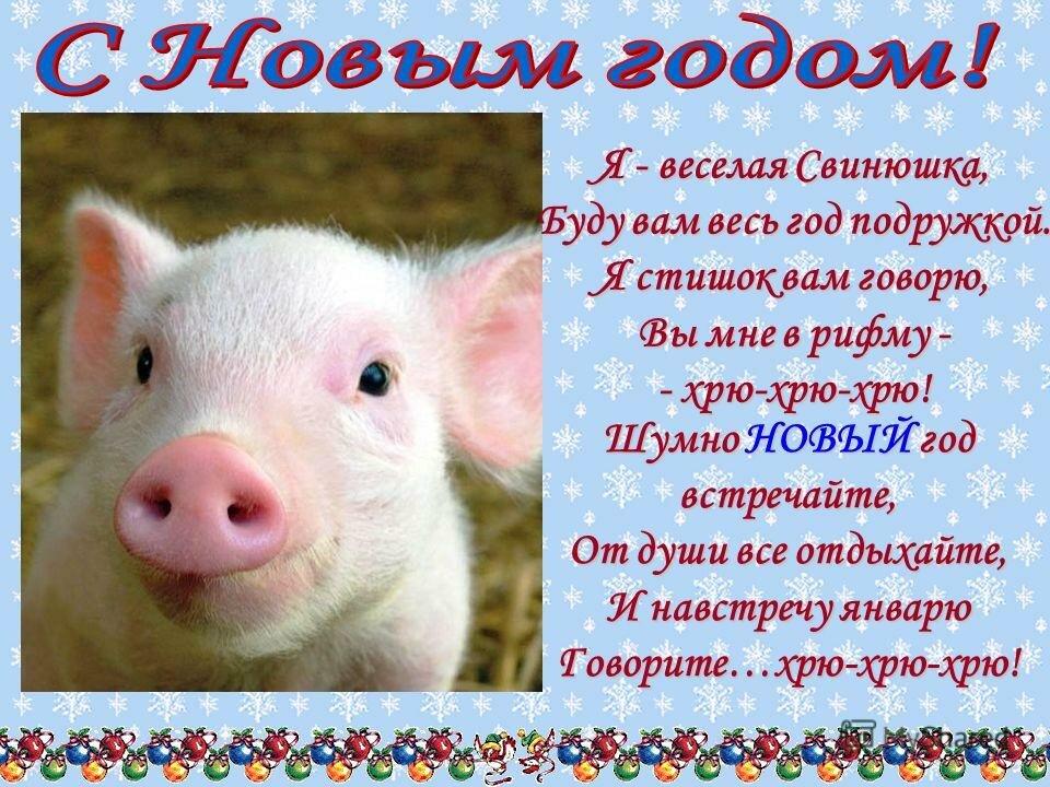 веселые поздравления в стихах с годом свиньи полянское нас