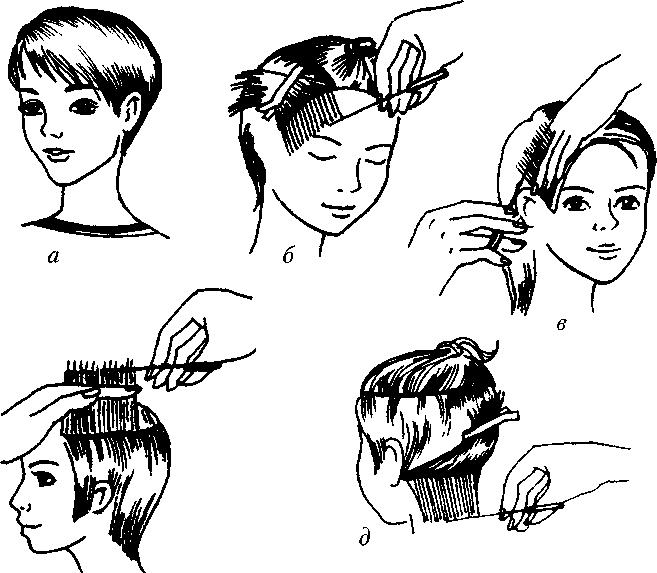 сведениям стрижка женская короткая схемы в картинках как-нибудь