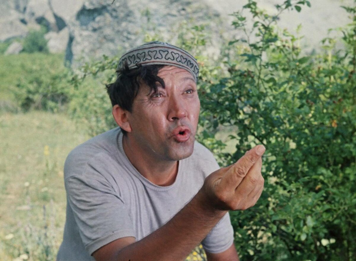 Картинки никулина в кавказской пленнице