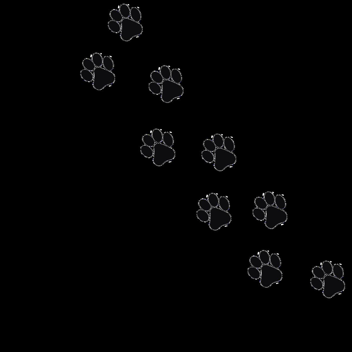 Открытка со следами