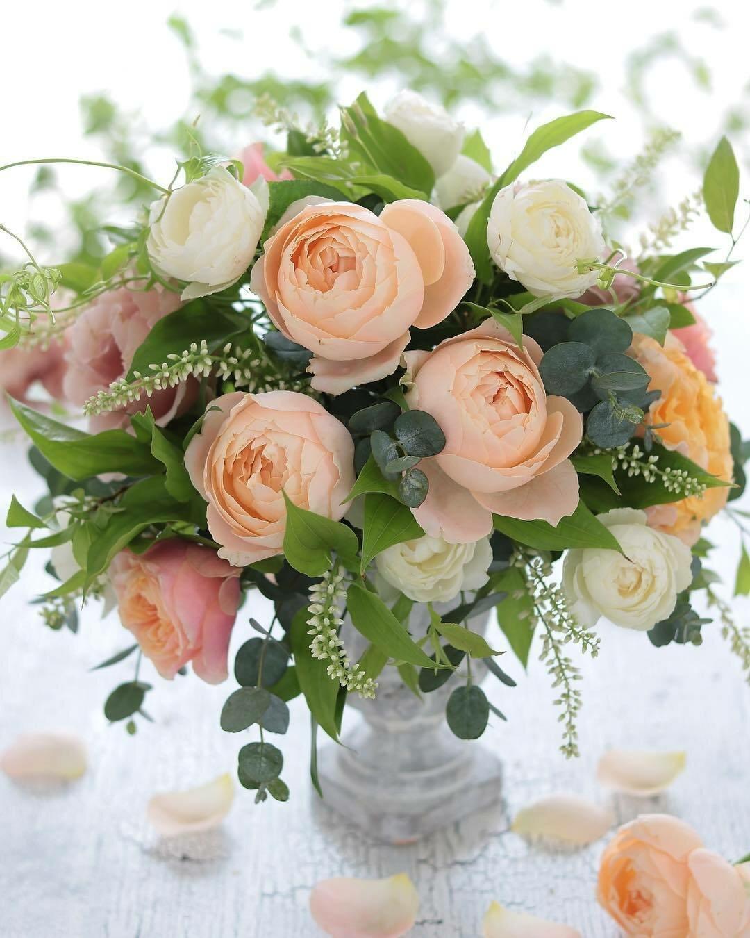 Фото поздравление цветы