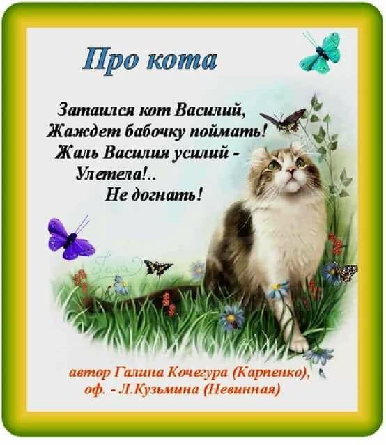 поэтому стихи о котиках короткие выступления важнейшая составляющая
