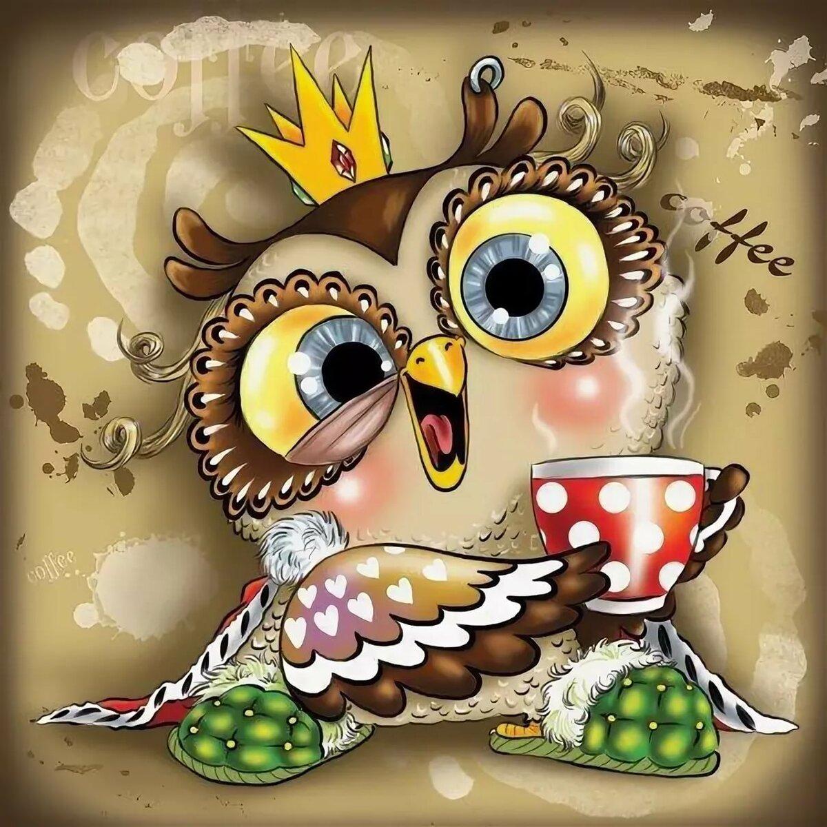 Картинки смешные мультяшные совы
