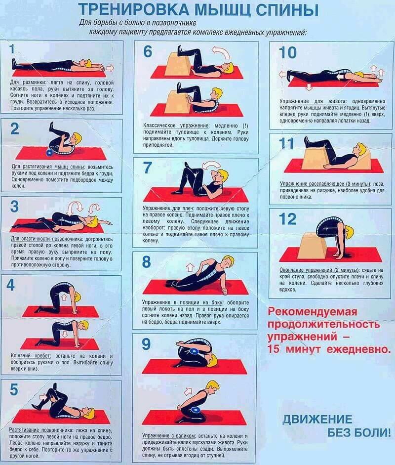 картинки упражнения при грыже позвоночника жанре экономического
