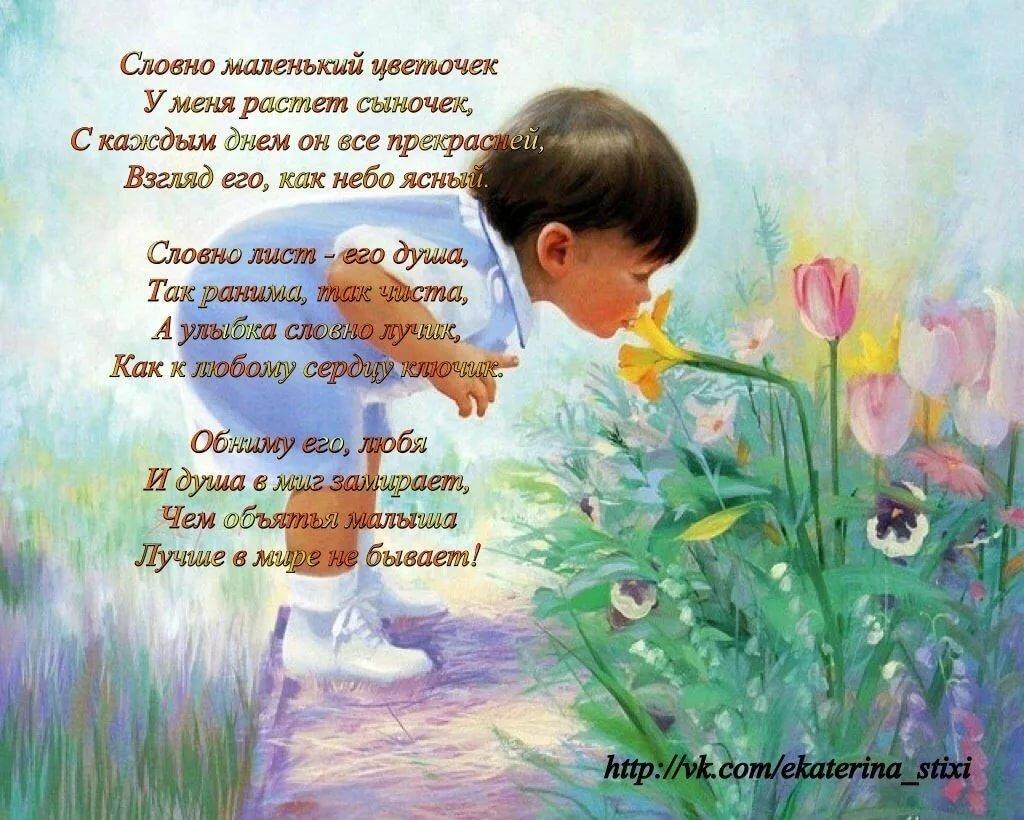 Стихи и картинки про сына