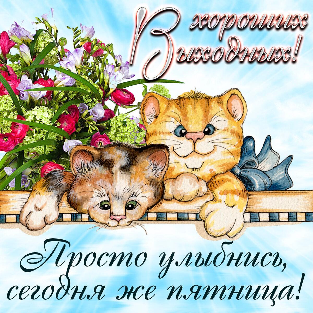 Спасибо большое, открытки с пожелания хороших выходных