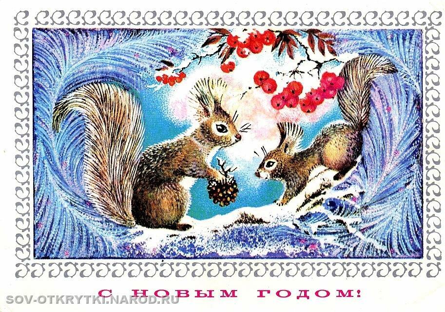 Белка советская открытка