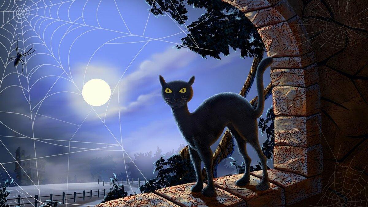Открытки черные кошки