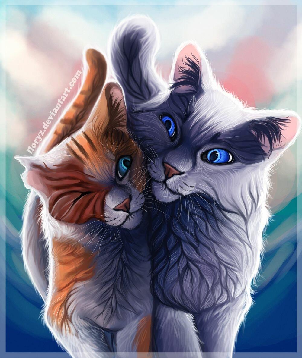 сержант красивые рисунки котов и кошек пара всей