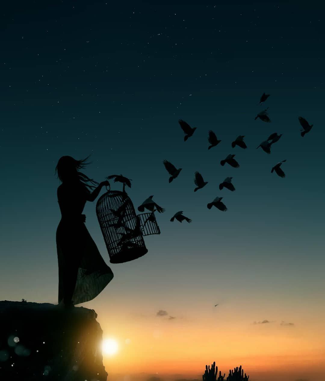 картинка птицы вылетают из банки тебе много счастья