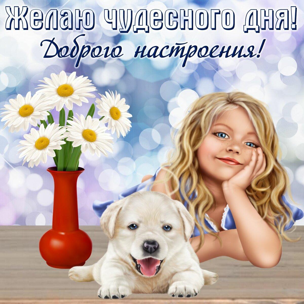 Добрые пожелания на день открытка, днем рождения прикольные