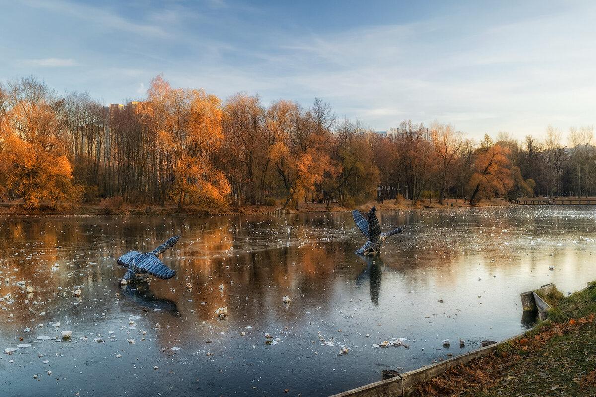 Парк поздней осенью картинки
