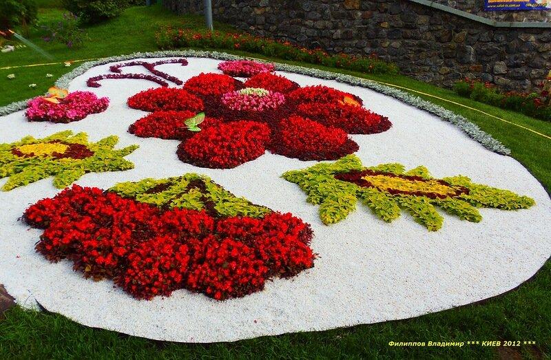 Композиции из цветов на тему мира, цветы свадебные