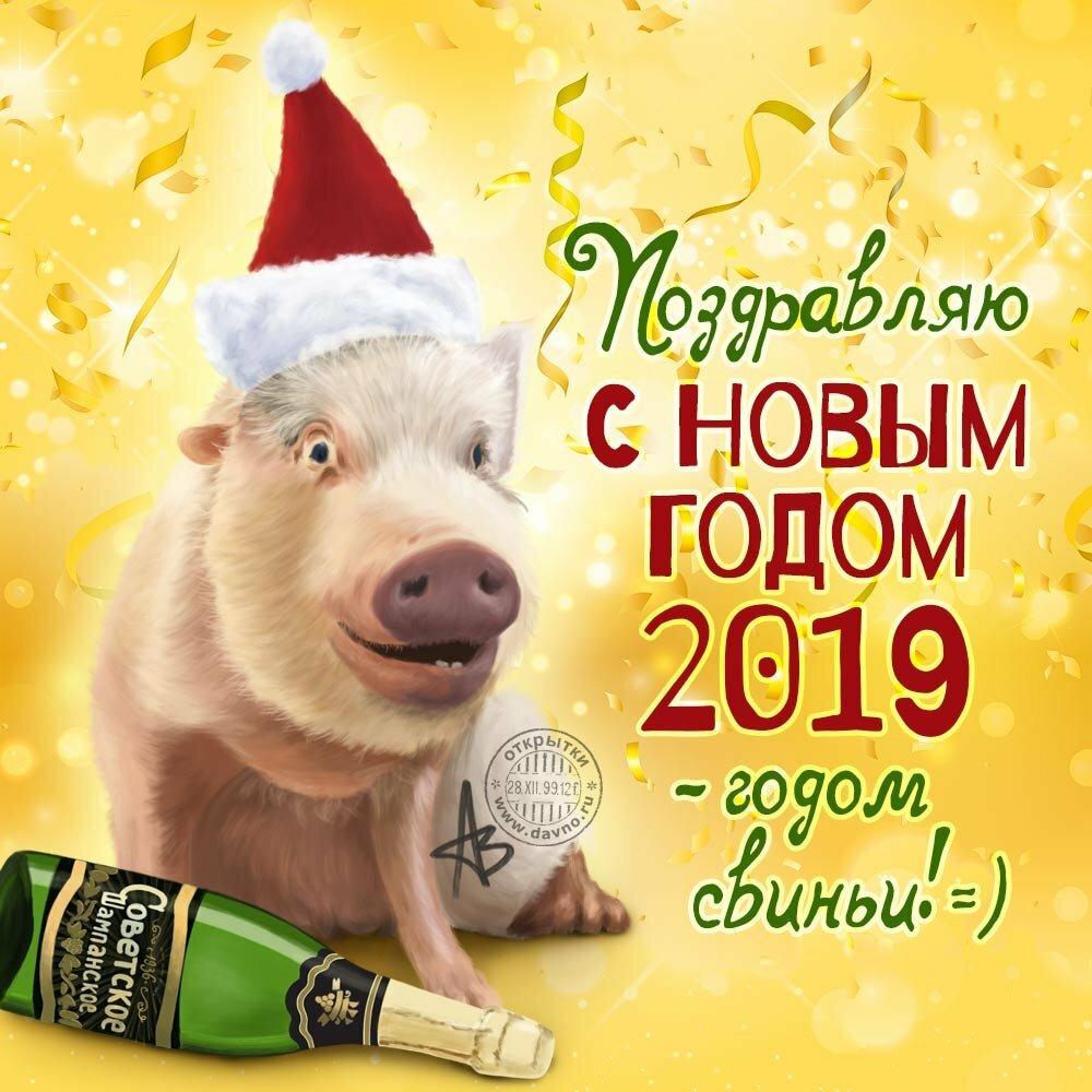 Новогодние поздравления с 2019 года, смешной рисунок картинки
