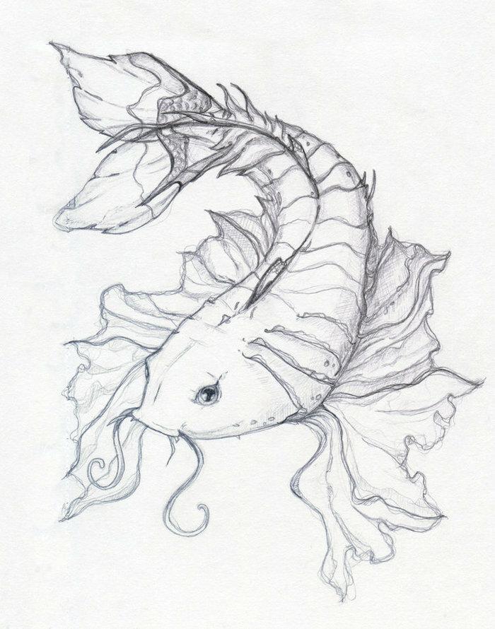Картинки рыбы для срисовки