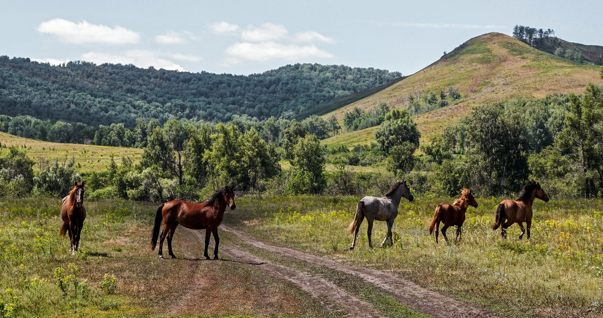 Деревня караульная гора нурлатский район фото неужели