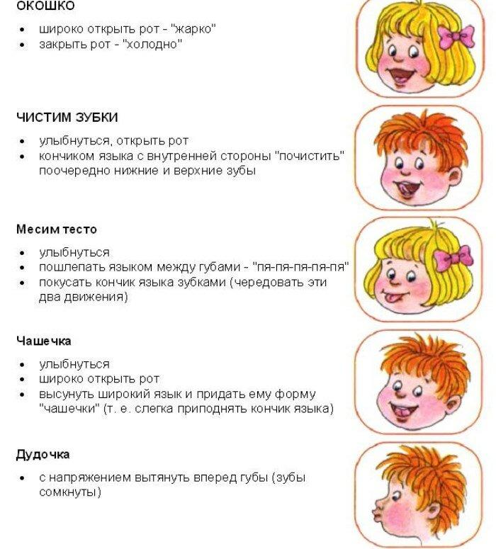 Логопедия в картинках и схемах