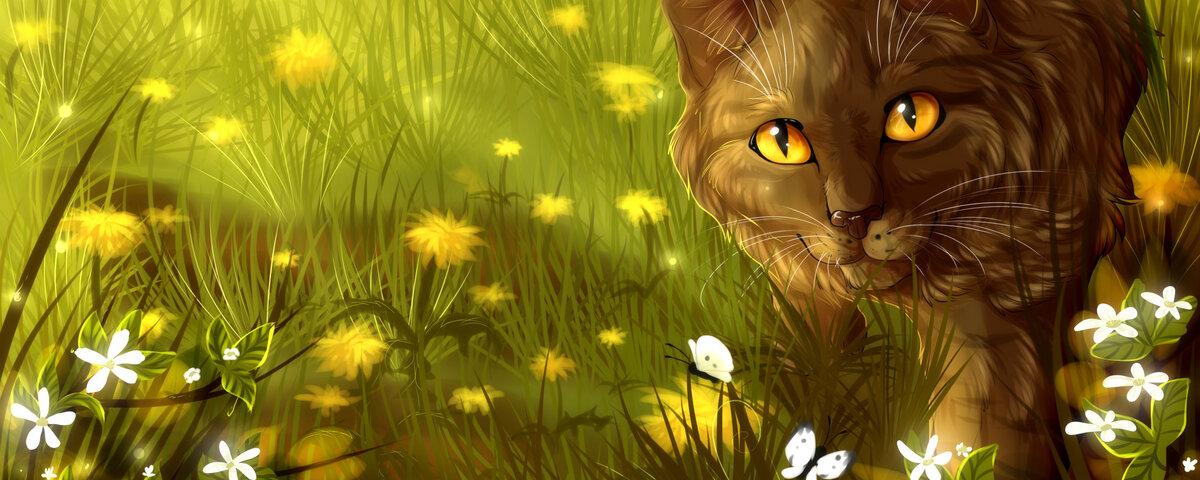 красивые картинки коты воители с природой намерена останавливаться этом