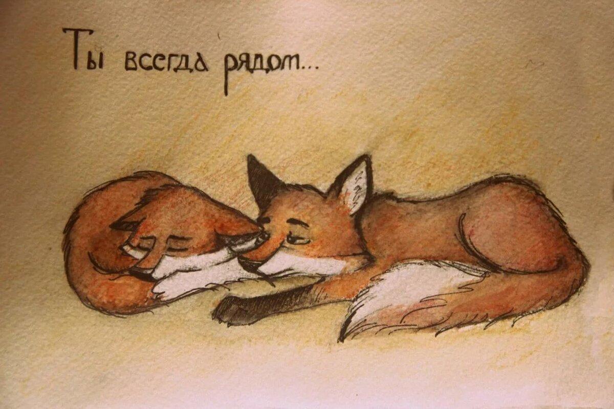 Обнять лисичку бесценно картинка