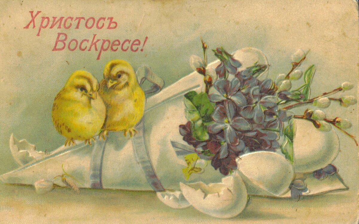Почтовые открытки рисованные, катеньке картинки крутые