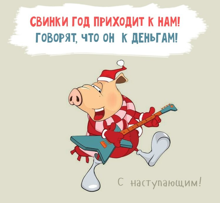 Принесли, новогодние прикольные открытки с годом свиньи