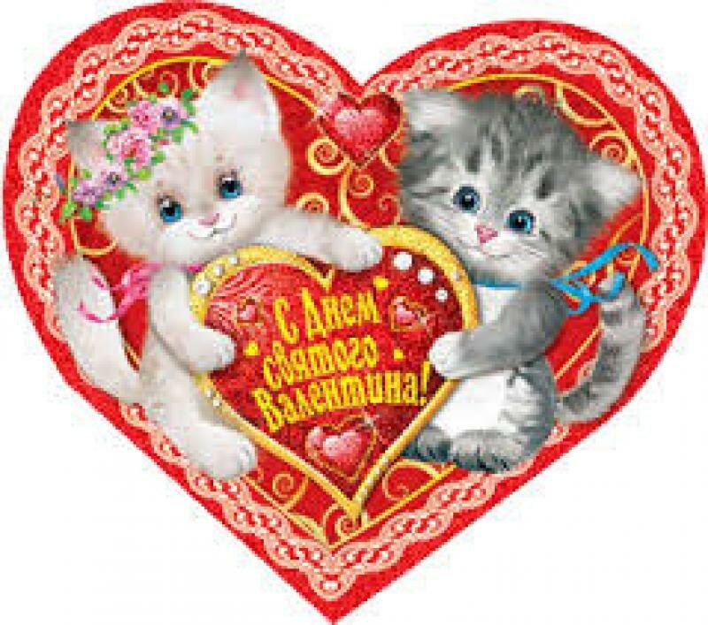 валентинки с котятами пожеланиями цвет может варьировать