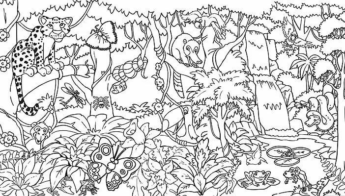 Картинка джунгли раскраска
