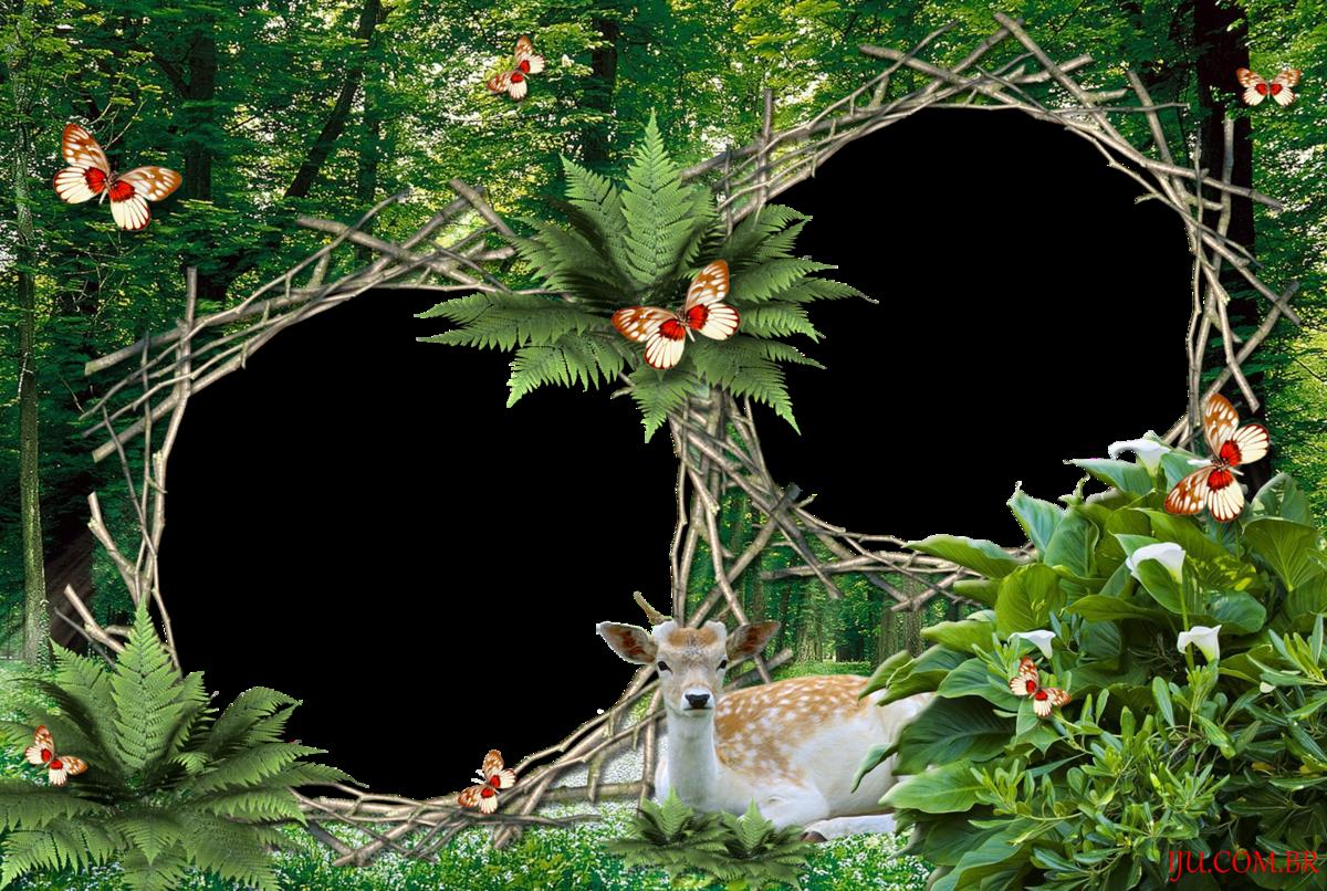 Фон с лесом рамка
