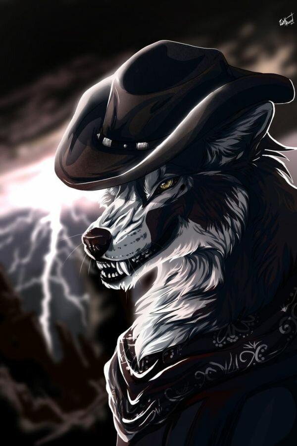Крутые картинки волки, днем