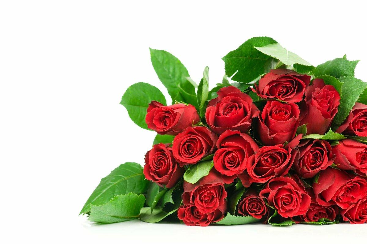 Открытка цветов розы, рождением