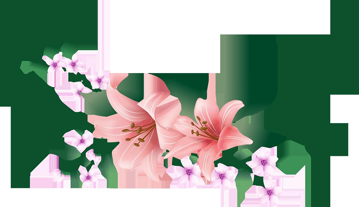 Картинки цветов на прозрачном фоне для презентации, поздравлением днем