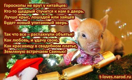 Слова на новый год поросенку поздравление