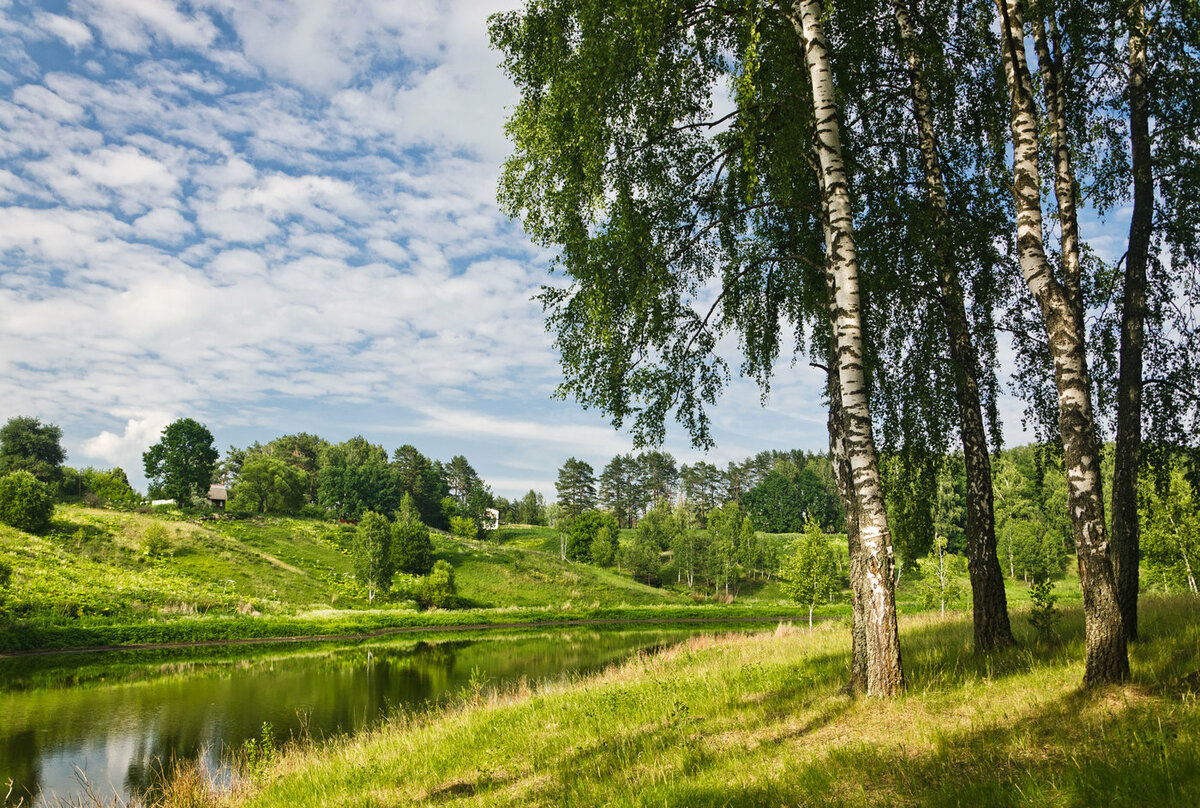 должность мешала летние пейзажи россии картинки птиц особую