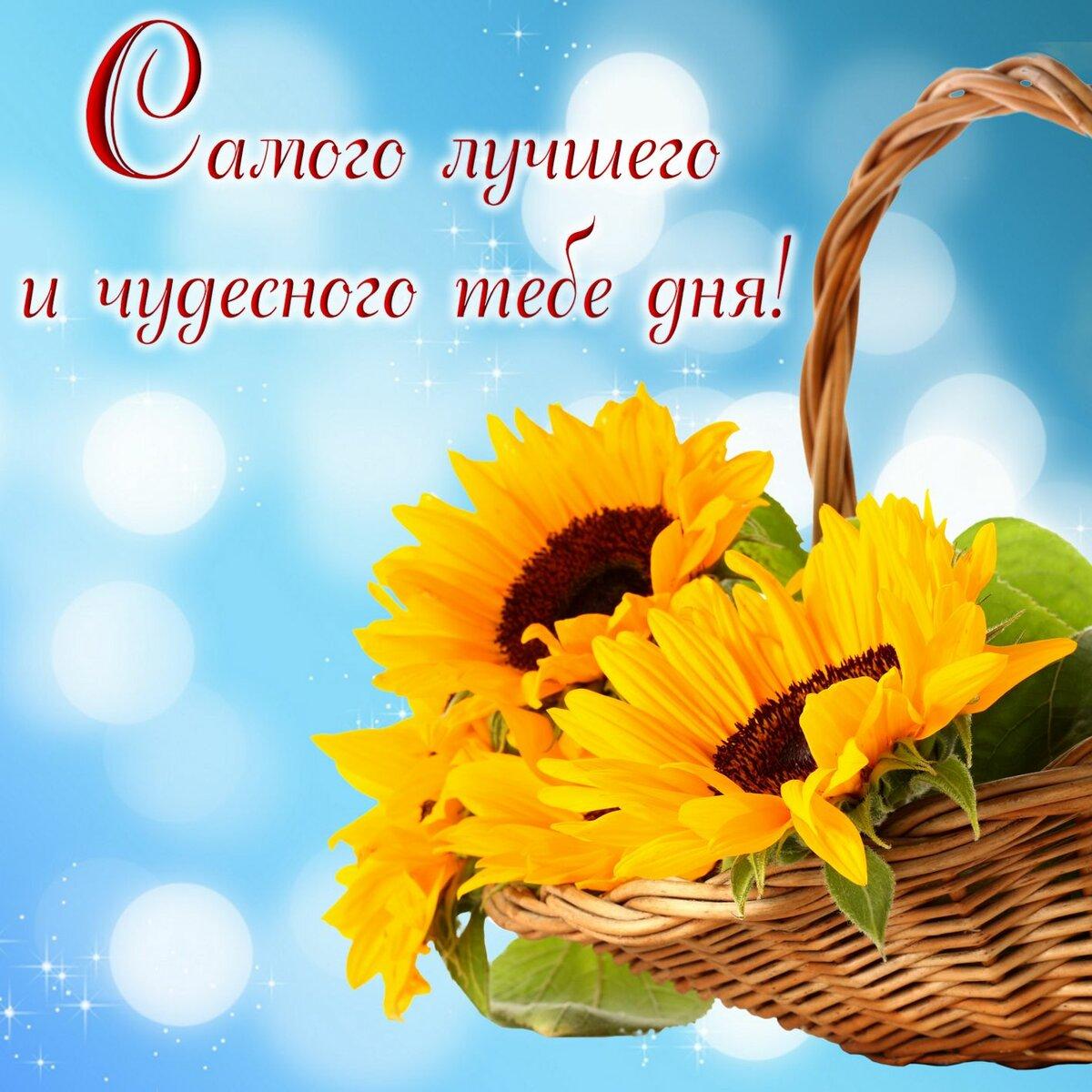 Красивая открытка с пожеланием хорошего дня и отличного настроения
