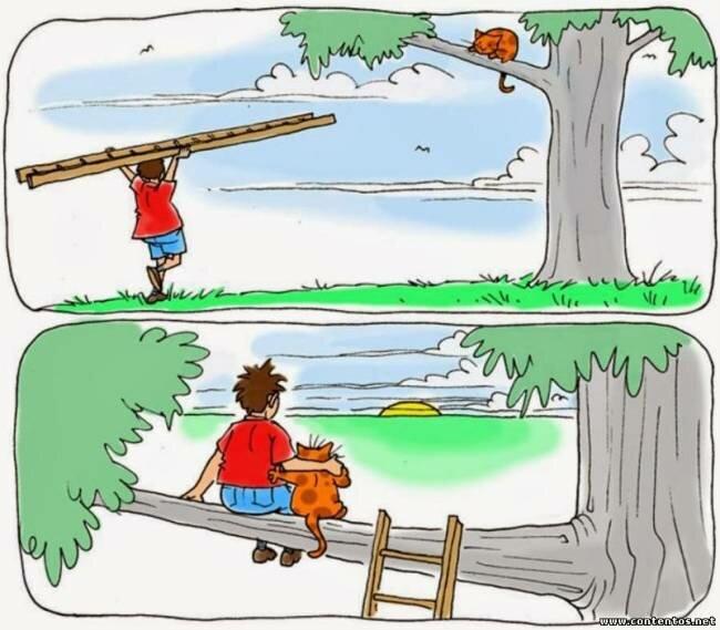 Смешные картинки на решение проблемы