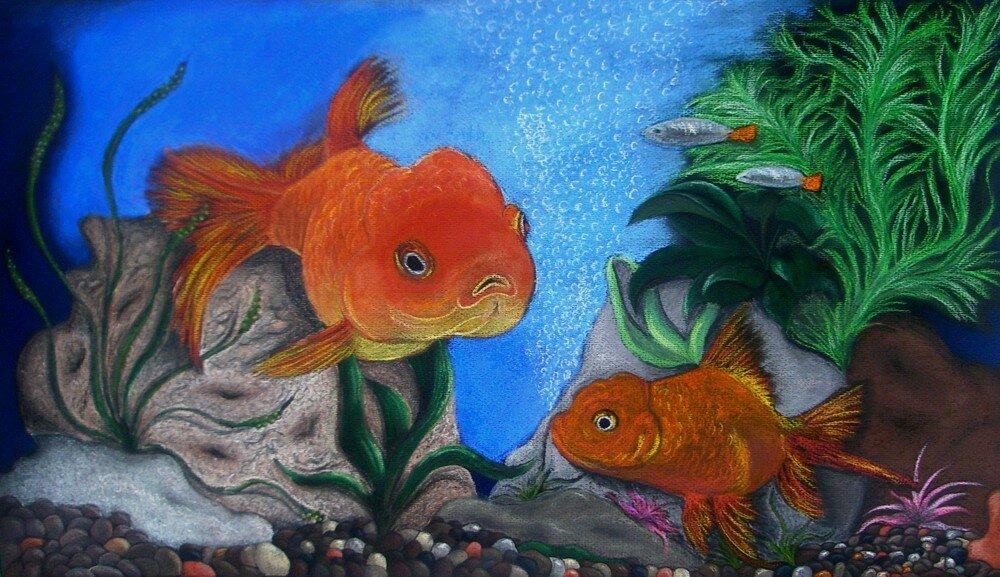 рисунок рыб в аквариуме красками территории