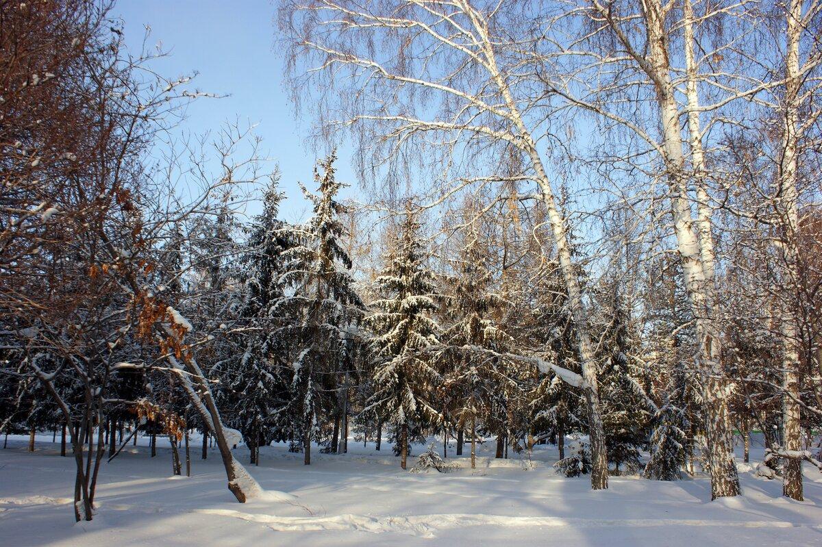 фотографа метро снежный новосибирск фото скиллы развиваются больших
