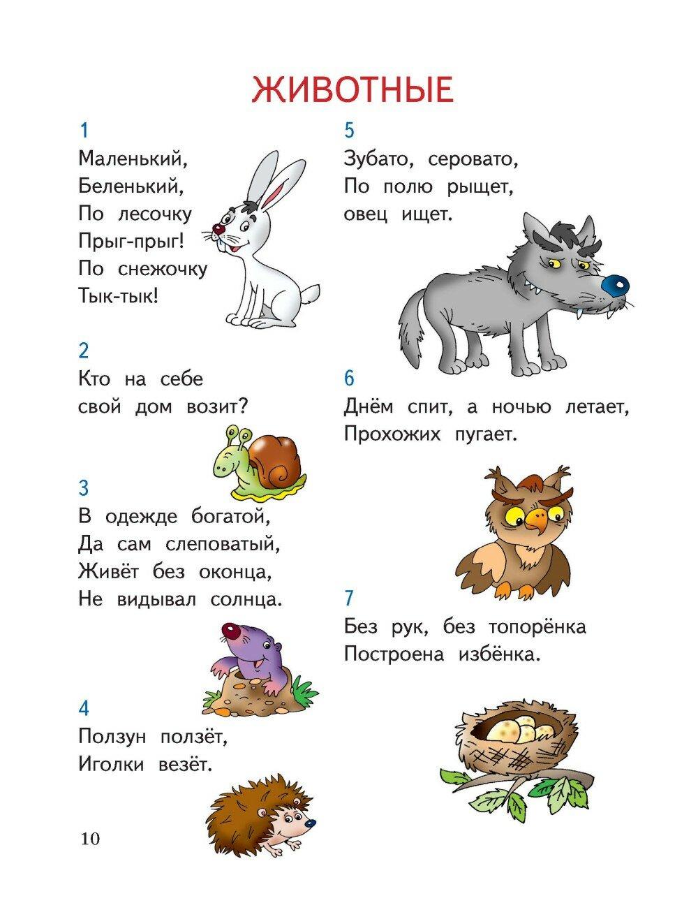 Картинки для загадок для детей
