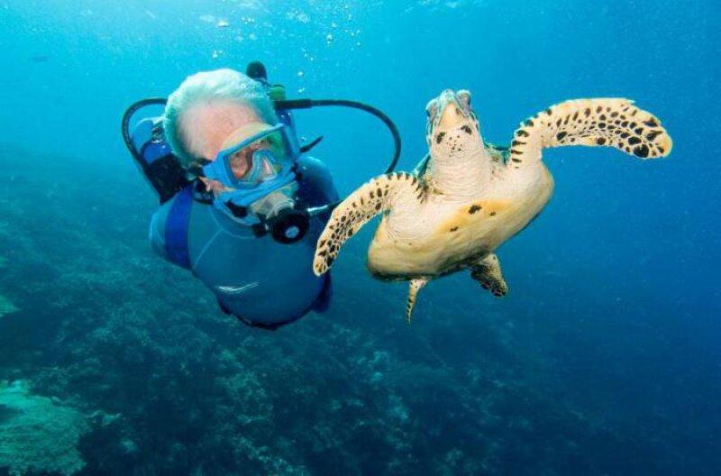 Океанолог профессия картинки